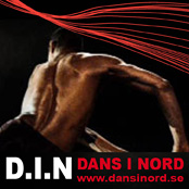 banner danstidningen DIN II